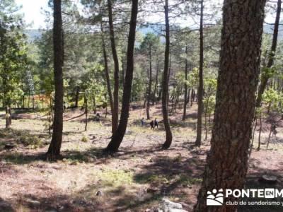 Castañar de la Sierra de San Vicente - Convento del Piélago;excursiones cerca de madrid con encant